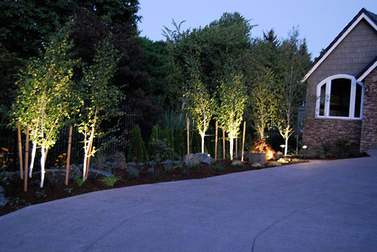 Night lighting installed by experts in lane county · expert outdoor light installation